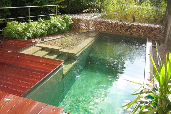 Natural Swimming Pools – Renae Walker ~ Realtor